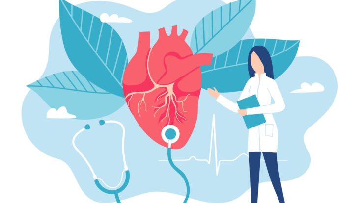Important Milestones and Discoveries of the Cardiovascular System